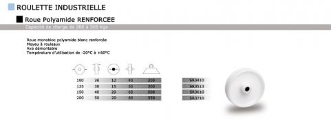 roue et roulettes industrielles roue polyamide renforc e. Black Bedroom Furniture Sets. Home Design Ideas